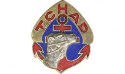 Insigne_régimentaire_du_Régiment_de_Marche_du_Tchad..jpg